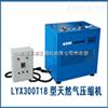 新产品LYW300T天然气压缩机
